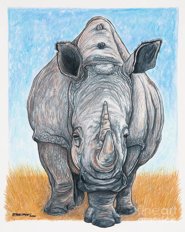 Rhino Art Print featuring the drawing Roaming Giant by Stephen Taylor
