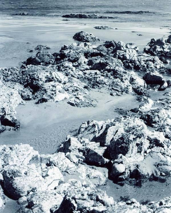 Ocean Art Print featuring the photograph Rocks At Shoreline by Jennifer Ott
