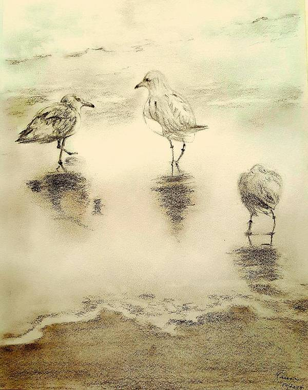 Birds Art Print featuring the drawing Shore Birds At Sunset by Elizabeth La Caille
