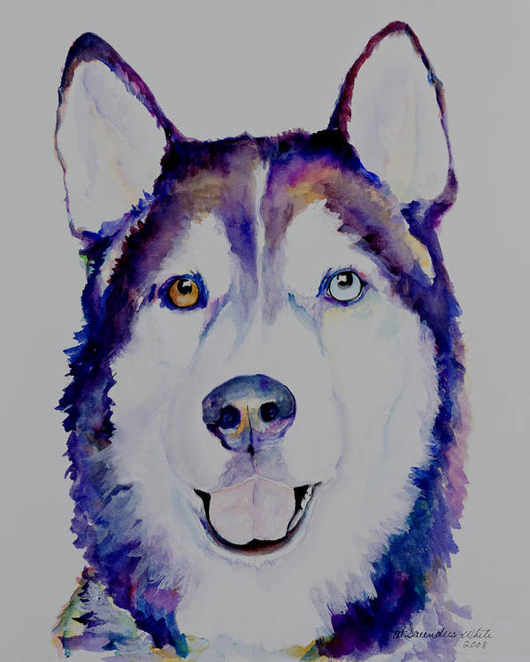 Siberian Husky Art Print featuring the painting Simba by Pat Saunders-White