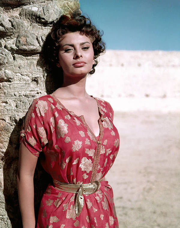 1950s Portraits Art Print featuring the photograph Sophia Loren, 1950s by Everett