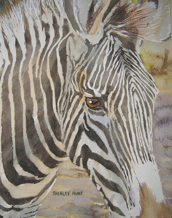 Zoological Art Print featuring the painting Stripes by Shirley Braithwaite Hunt