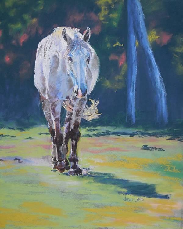 Horse Art Print featuring the painting Swish by Janae Lehto