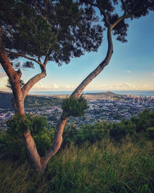 Tantalus Lookout Art Print featuring the photograph Tantalus Views by Jason Keinigs