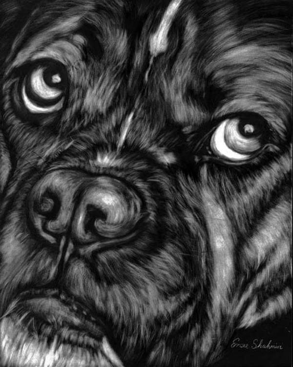 Animals Art Print featuring the painting The Sad Boxer by Enzie Shahmiri