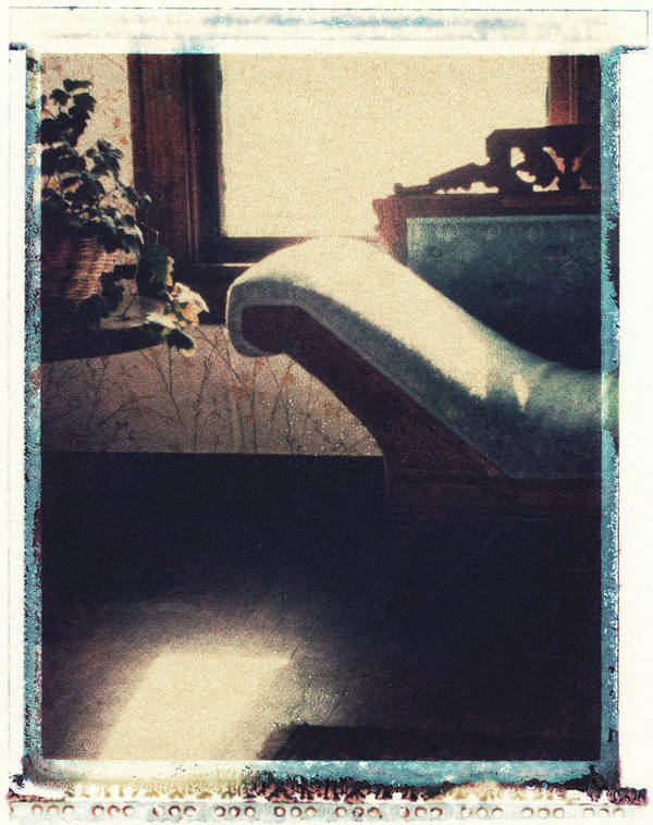 Polaroid Transfer Art Print featuring the photograph Through The Window by Bernice Williams