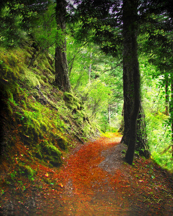 Path Art Print featuring the digital art Through The Woods by Vicki Lea Eggen