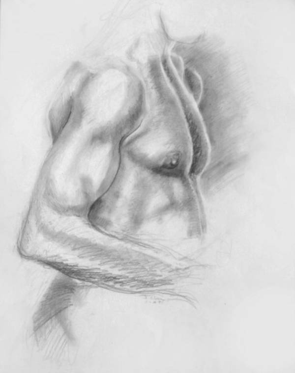 Torso Art Print featuring the drawing Torso Chris II by John Clum
