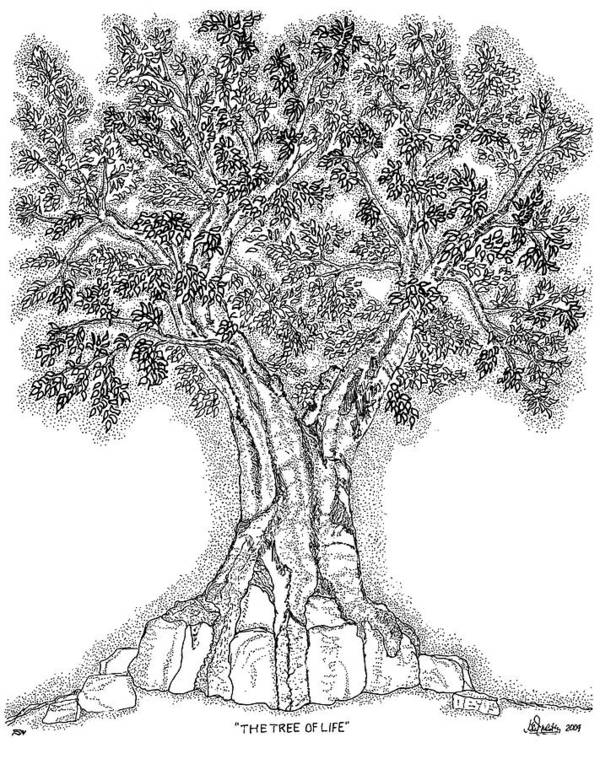 Christian Art Print featuring the drawing Tree Of Life 1 by Glenn McCarthy Art and Photography