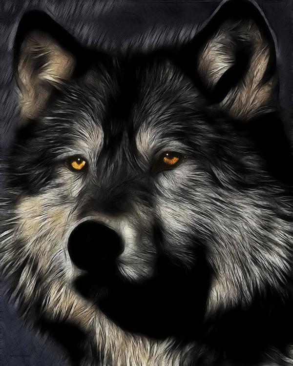 Twilight Eyes Of The Lone Wolf Art Print