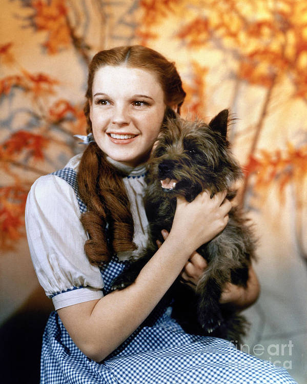 1939 Art Print featuring the photograph Wizard Of Oz, 1939 by Granger