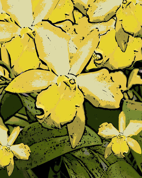 Orchid Art Print featuring the photograph Yellow Orchids Woodcut by Ann Tracy