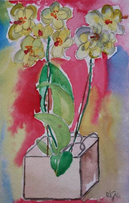 Pencil Art Print featuring the painting Orchida by Roger Cummiskey