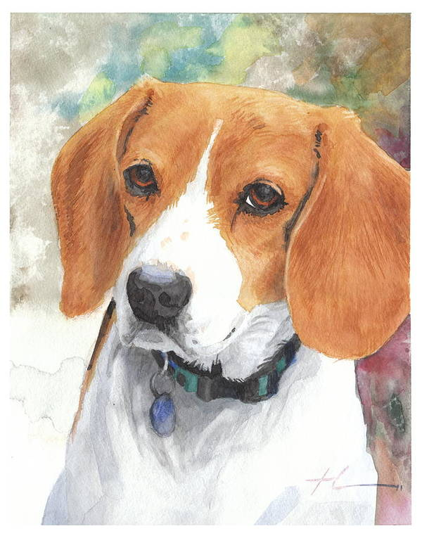 <a Href=http://miketheuer.com Target =_blank>www.miketheuer.com</a> Hound Watercolor Portrait Art Print featuring the painting Hound Watercolor Portrait by Mike Theuer