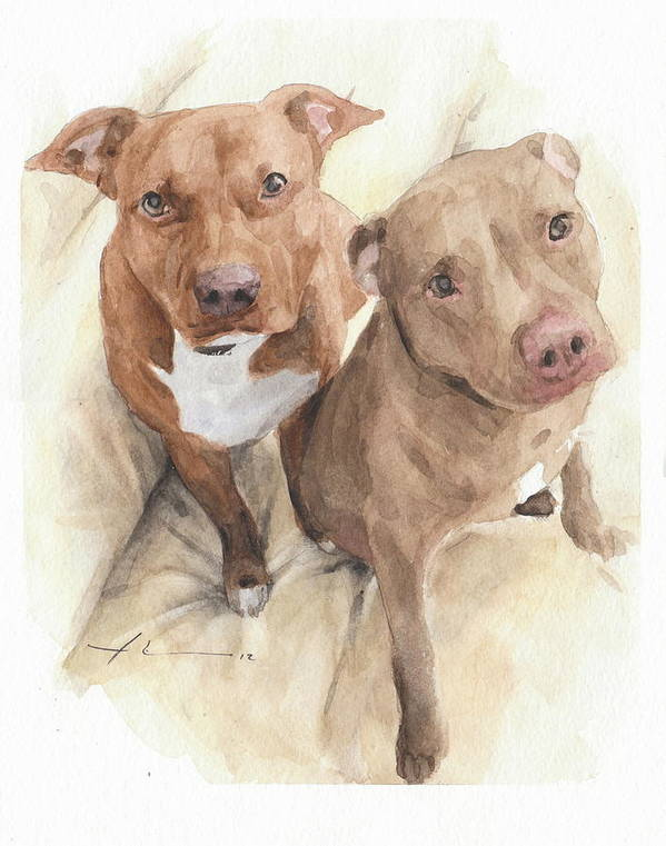 Www.miketheuer.com Pitbulls Watercolor Portrait Art Print featuring the drawing Pitbulls Watercolor Portrait by Mike Theuer