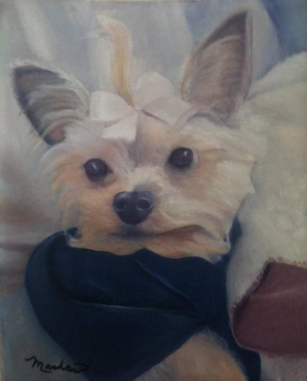 Dog Art Print featuring the painting Princess Pricilla by Sheila Mashaw
