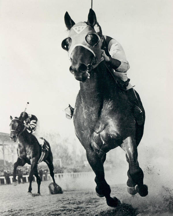 Classic Art Print featuring the photograph Seabiscuit Horse Racing #3 by Retro Images Archive