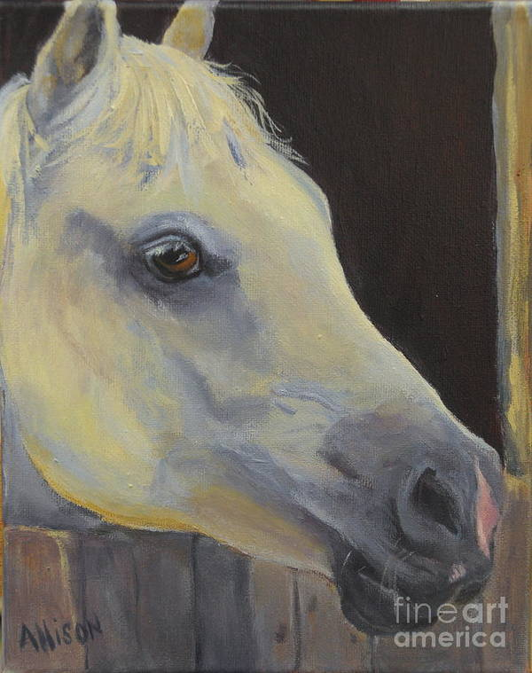 Horse Art Print featuring the painting White Horse by Stephanie Allison