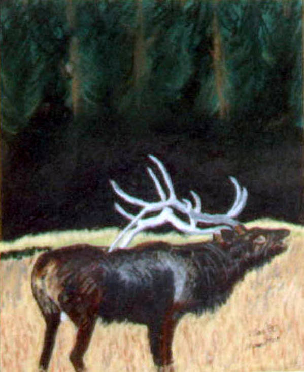 Antelope Art Print featuring the painting Antelop by Stan Hamilton
