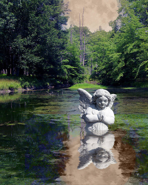 Pond Art Print featuring the photograph Baptism by Tom Romeo