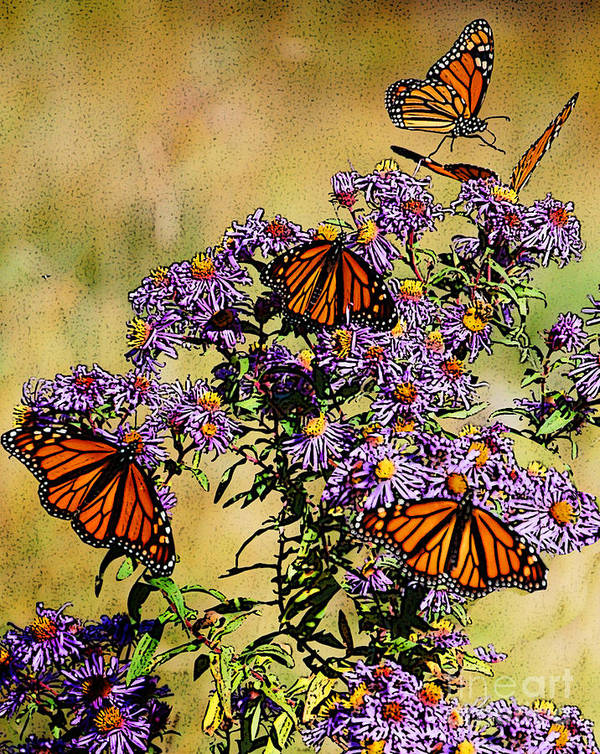 Diane Berry Art Print featuring the drawing Butterfly Party by Diane E Berry