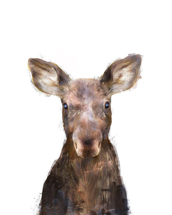 Moose Art Print featuring the painting Little Moose by Amy Hamilton