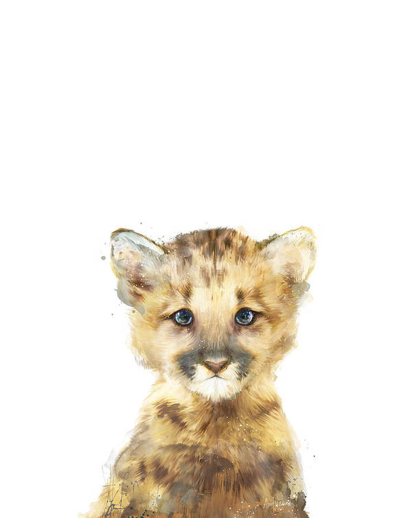 Mountain Lion Art Print featuring the painting Little Mountain Lion by Amy Hamilton