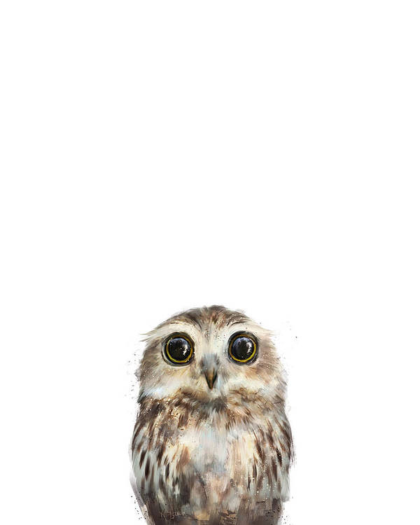 Owl Art Print featuring the painting Little Owl by Amy Hamilton