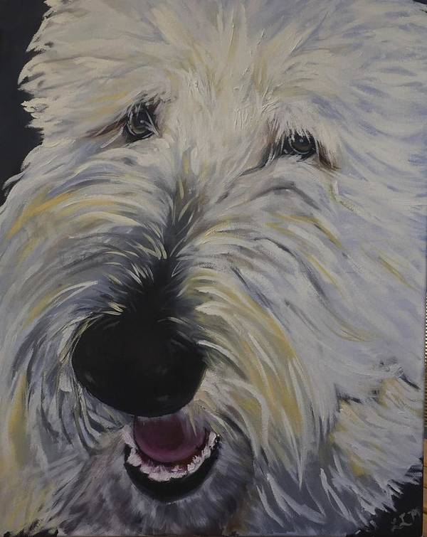 Goldendoodle Art Print featuring the painting Mac-a-doodle by Laura Leigh McCall