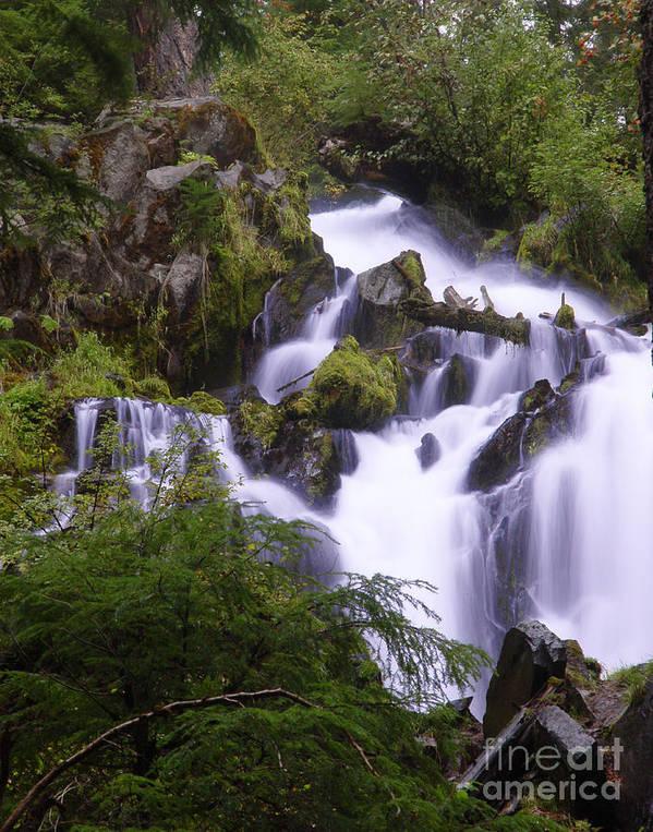Waterfall Art Print featuring the photograph National Creek Falls 05 by Peter Piatt