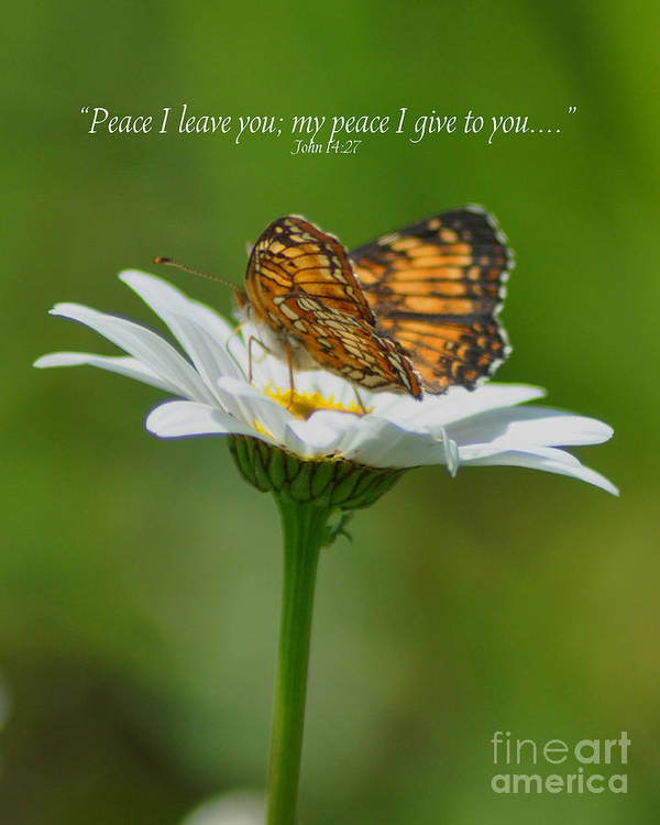 Diane Berry Art Print featuring the photograph Peace I Leave You by Diane E Berry