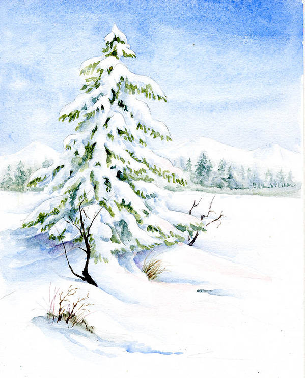 Watercolor Painting Art Print featuring the painting Snow On Evergreens by Karla Beatty