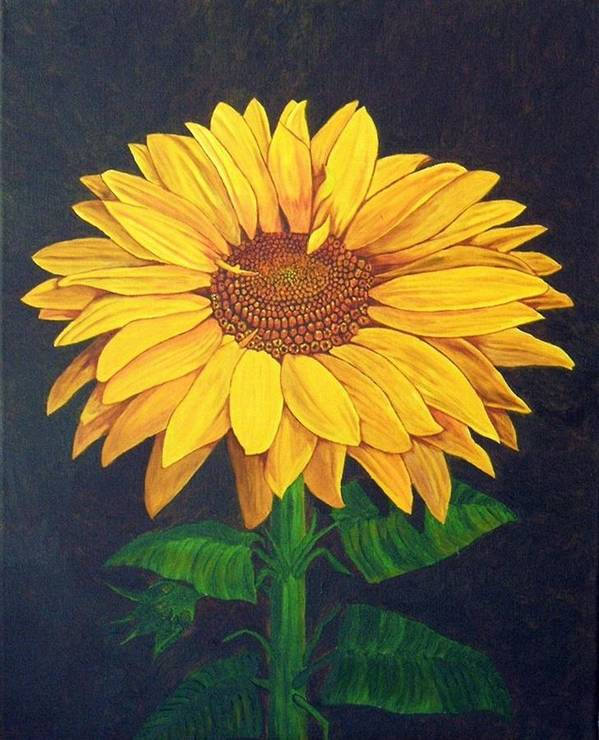 Sunflower Art Print featuring the painting Sunny Flower by Brandy House