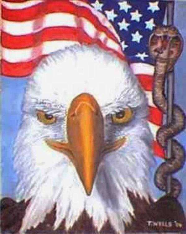 Freedom Eagle Cobra Flag Art Print featuring the print Terrorists are Slithering in on the Backside of our Freedom by Tanna Lee M Wells