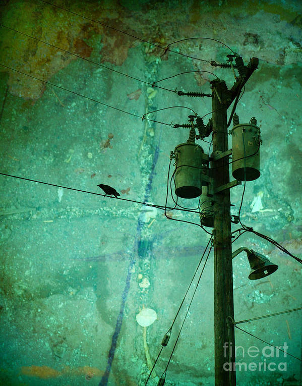 Urban Art Print featuring the photograph The Urban Crow by Tara Turner
