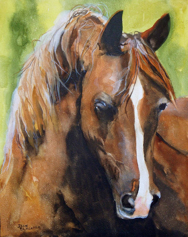 Horse Art Print featuring the painting White Blaze by Jean Blackmer