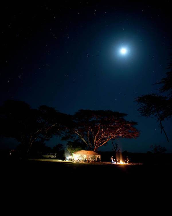 Tranquility Art Print featuring the photograph Camping Under Fever Tree And Full Moon by Mike D. Kock