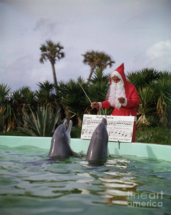 People Art Print featuring the photograph Dolphins Singing For Santa Claus by Bettmann