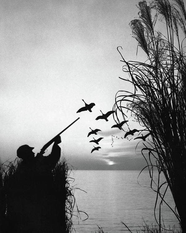 Rifle Art Print featuring the photograph Man Duck-hunting by Stockbyte