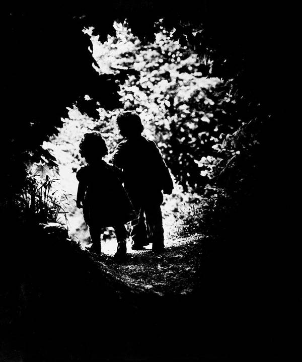 Timeincown Art Print featuring the photograph The Walk To Paradise Garden by W. Eugene Smith