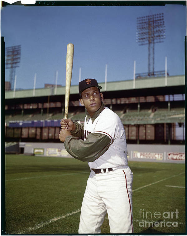 Sports Bat Art Print featuring the photograph Orlando Cepeda by Louis Requena