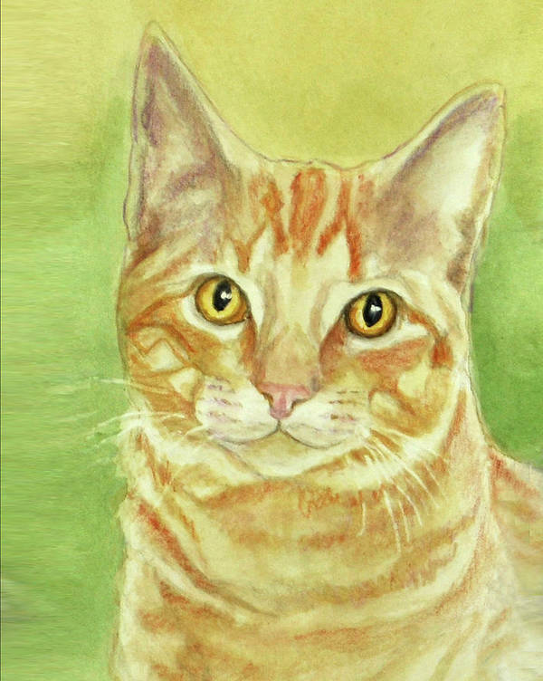 Cat Art Print featuring the painting Orange Tabby Portrait by Phyllis Tarlow
