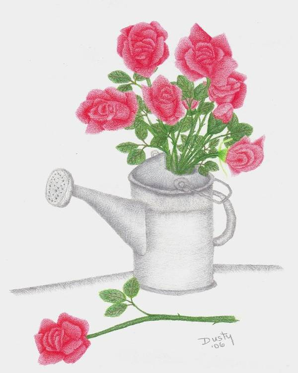 Rose Art Print featuring the drawing Watering Can With Red Roses by Dusty Reed