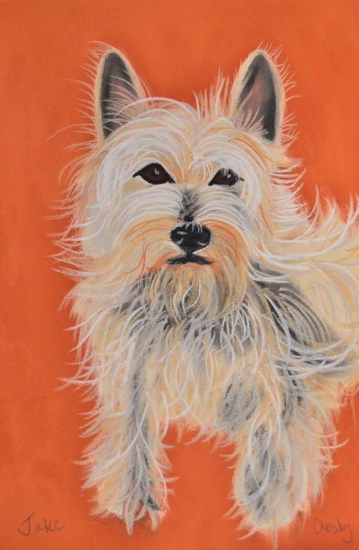 West Highland Terrier Art Print featuring the pastel Serious Westie by Christine Crosby