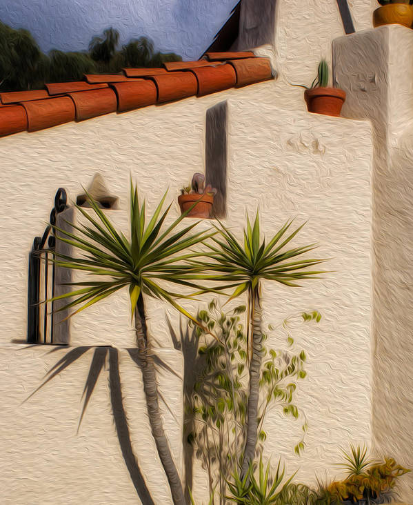 Palm Trees Art Print featuring the photograph Adobe Wall by Don Schiffner