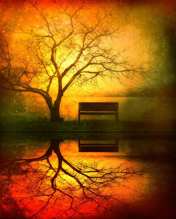 Bench Art Print featuring the photograph And I Will Wait For You Until The Sun Goes Down by Tara Turner