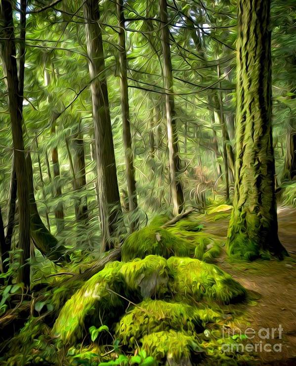 Rainforest Art Print featuring the digital art Enchanted Forest by Ty Korte