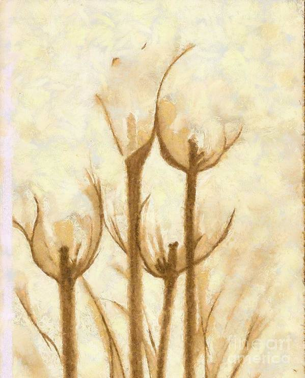 Artwork Art Print featuring the mixed media Flower Sketch by Yanni Theodorou