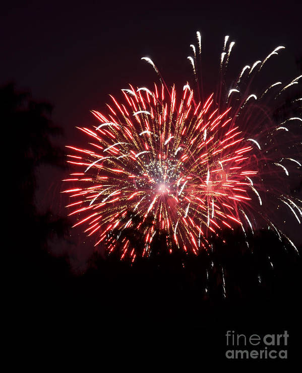 Fireworks Art Print featuring the photograph Red Rocket Burst by Linda Steele