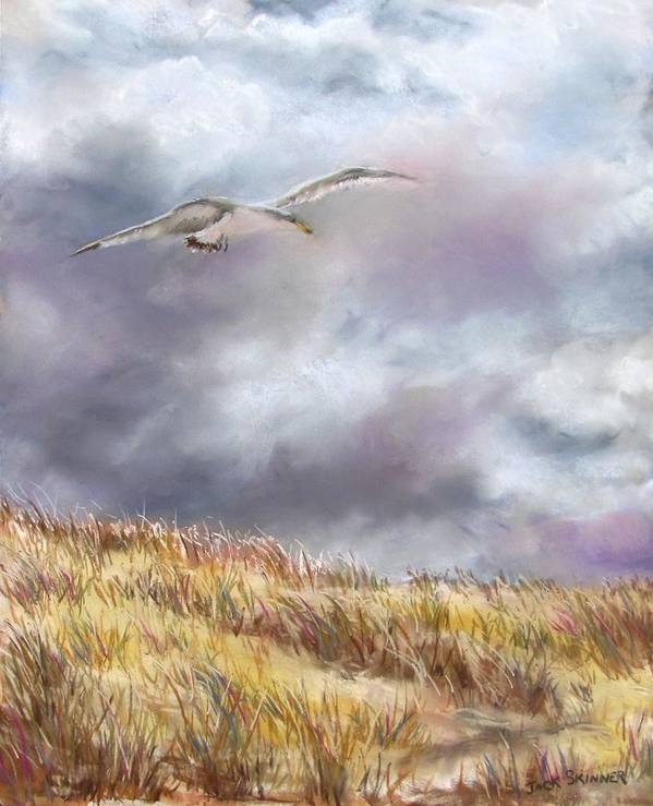 Seagull Art Print featuring the painting Seagull Flying Over Dunes by Jack Skinner